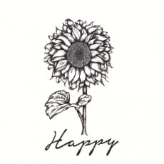 'Happy' Organic Scent Collection - Celebrating All Things Joyous & Hopeful